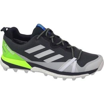 Topánky Muži Turistická obuv adidas Originals Terrex Skychaser LT Gtx Sivá, Pastelová zelená, Grafit