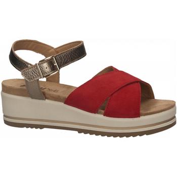 Topánky Ženy Sandále Enval D SN 52934 rosso