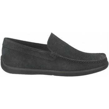 Topánky Muži Mokasíny Frau CASTOROpunz jeans