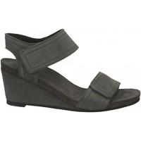 Topánky Ženy Sandále Ca Shott SUEDE grigio-chiaro