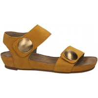 Topánky Ženy Sandále Ca Shott SUEDE sole