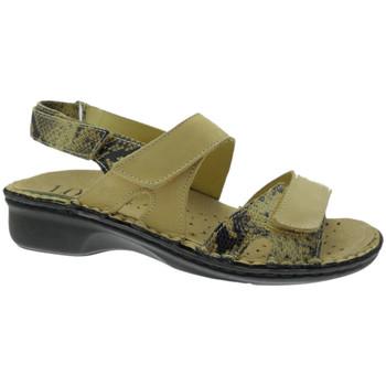 Topánky Ženy Sandále Calzaturificio Loren LOM2833ta tortora