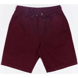 Oblečenie Muži Šortky a bermudy Wrung Short  Shark rouge bordeaux