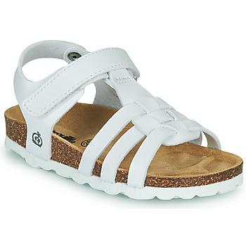 Topánky Dievčatá Sandále Citrouille et Compagnie JANISOL Biela