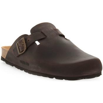 Topánky Muži Nazuvky Grunland MOGANO 70ROBI Marrone