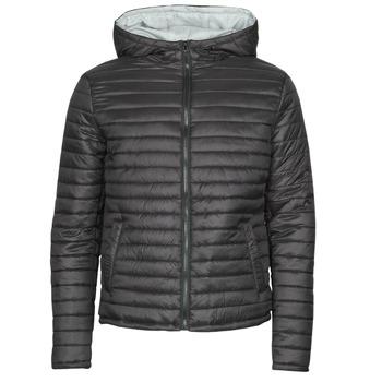 Oblečenie Muži Vyteplené bundy Yurban NEFFLE Čierna