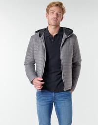 Oblečenie Muži Vyteplené bundy Yurban NEFFLE Šedá