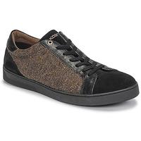 Topánky Muži Nízke tenisky Kost CYCLISTE 55 Čierna / Hnedá