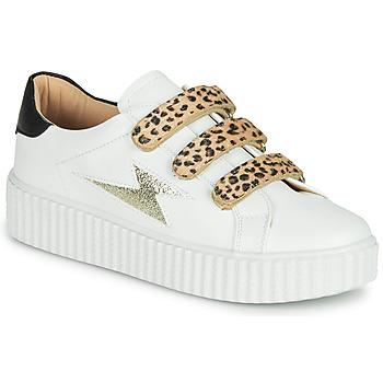 Topánky Ženy Nízke tenisky Vanessa Wu BASKETS À SCRATCHS ANIMALIER Biela / Leopard