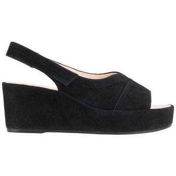 Topánky Ženy Sandále Högl Pappilon Schwarz Sandals Black