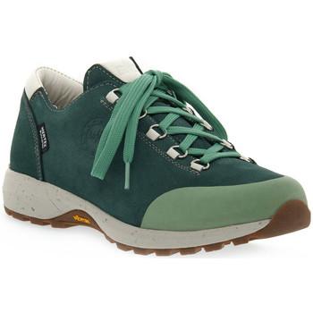 Topánky Ženy Turistická obuv Lomer BALI MTX PINE Verde