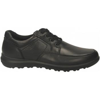 Topánky Muži Derbie Enval U BA 62162 nero
