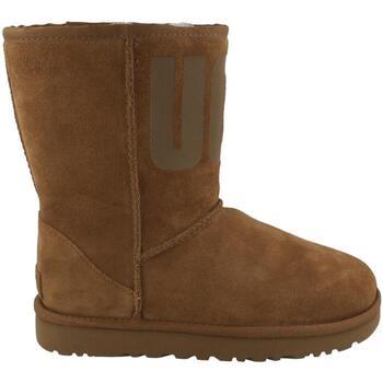 Topánky Ženy Čižmičky UGG  Beige