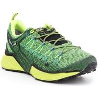 Topánky Muži Nízke tenisky Salewa MS Dropline Gtx Zelená,Pastelová zelená