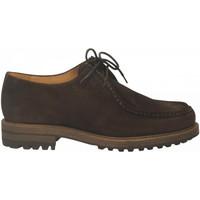 Topánky Muži Derbie Antica Cuoieria CORTINA nutella