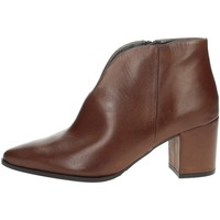Topánky Ženy Čižmičky Paola Ferri D4676 Brown