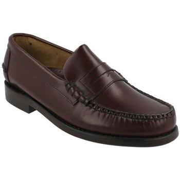 Topánky Muži Mokasíny Sebago  Rojo
