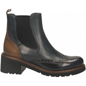 Topánky Ženy Čižmičky Calpierre SPAZZOLATO blu