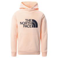 Oblečenie Dievčatá Mikiny The North Face DREW PEAK HOODIE 2.0 Ružová