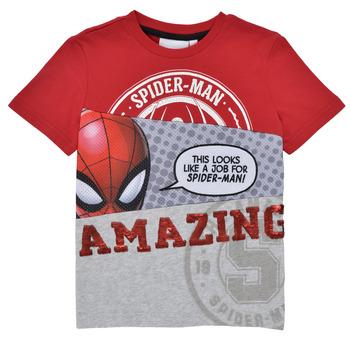 Oblečenie Chlapci Tričká s krátkym rukávom Desigual 21SBTK08-3005 Viacfarebná