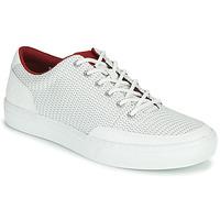 Topánky Muži Nízke tenisky Timberland ADV 2.0 GREEN KNIT OX Biela