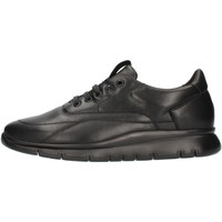 Topánky Muži Členkové tenisky Frau 09L0 Black