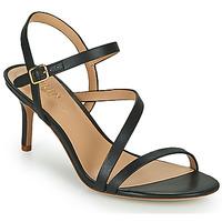 Topánky Ženy Sandále Lauren Ralph Lauren LANDYN Čierna