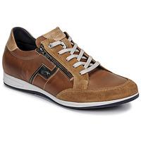 Topánky Muži Nízke tenisky Fluchos 0207-AFELPADO-CAMEL Hnedá