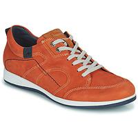 Topánky Muži Nízke tenisky Fluchos 9734-CRETA-CUERO Hnedá
