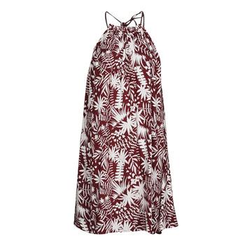 Oblečenie Ženy Krátke šaty Freeman T.Porter ROCCA MOROCCO Bordová