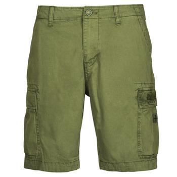Oblečenie Muži Šortky a bermudy Napapijri NOSTRAN Zelená