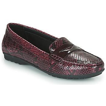 Topánky Ženy Mokasíny Geox D ELIDIA Bordová