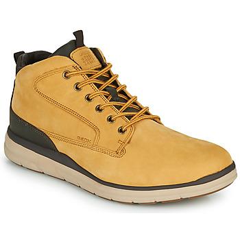 Topánky Muži Členkové tenisky Geox U HALLSON Hnedá