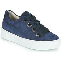 Topánky Ženy Nízke tenisky Gabor 6646446 Námornícka modrá