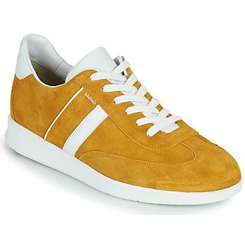 Topánky Muži Nízke tenisky Lloyd BURT Žltá horčicová