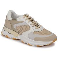 Topánky Ženy Nízke tenisky Lumberjack SWAY Béžová / Biela