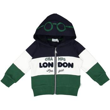 Oblečenie Deti Mikiny Melby 20D0210 Zelená