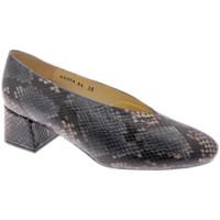 Topánky Ženy Lodičky Calzaturificio Loren LO60904pit grigio