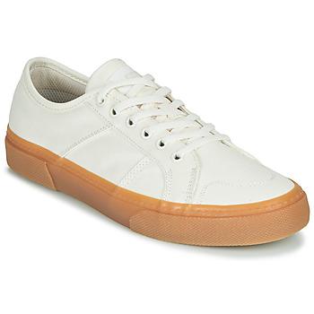 Topánky Muži Nízke tenisky Globe SURPLUS Biela