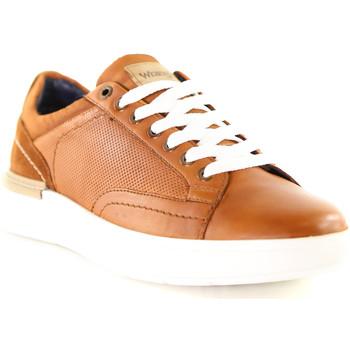 Topánky Muži Nízke tenisky Wrangler WM01181A Hnedá