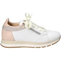 Topánky Ženy Nízke tenisky Exton E18 Biely