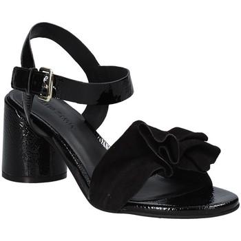 Topánky Ženy Sandále Elvio Zanon EJ5605P.L čierna