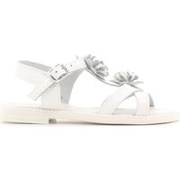 Topánky Deti Sandále Lulu LT080056L Biely