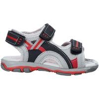 Topánky Deti Sandále U.s. Golf S19-SUK466 Modrá