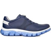 Topánky Muži Nízke tenisky CallagHan 42700 Modrá