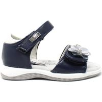 Topánky Dievčatá Sandále Miss Sixty S19-SMS570 Modrá