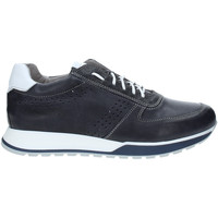 Topánky Muži Nízke tenisky Rogers 5065 Modrá