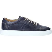 Topánky Muži Nízke tenisky Rogers DV 08 Modrá