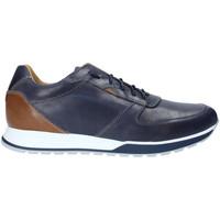 Topánky Muži Nízke tenisky Rogers 5068 Modrá