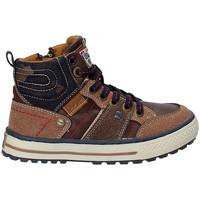 Topánky Deti Turistická obuv Wrangler WJ17216 Hnedá